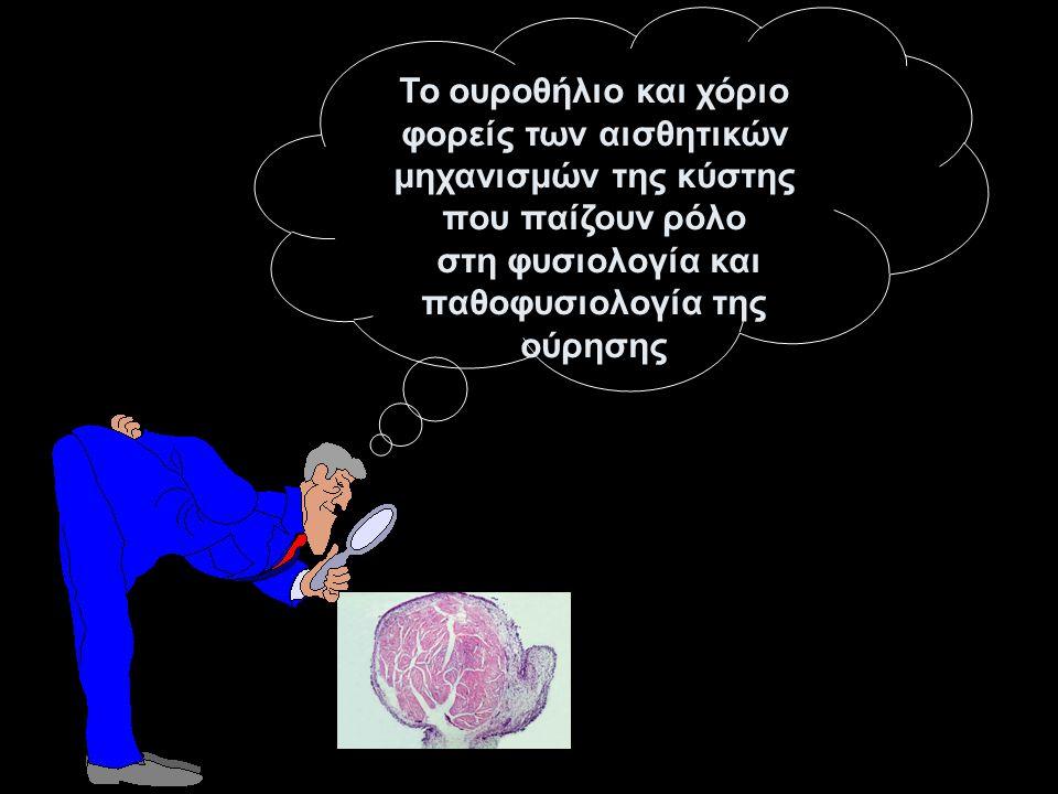 στη φυσιολογία και παθοφυσιολογία της ούρησης