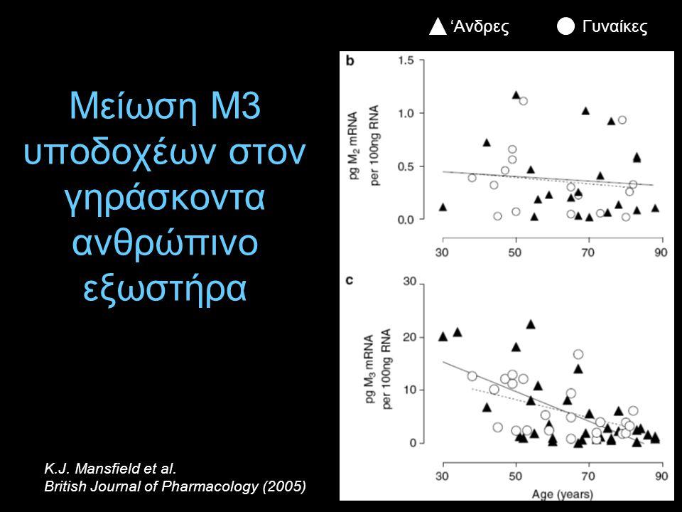Μείωση Μ3 υποδοχέων στον γηράσκοντα ανθρώπινο εξωστήρα