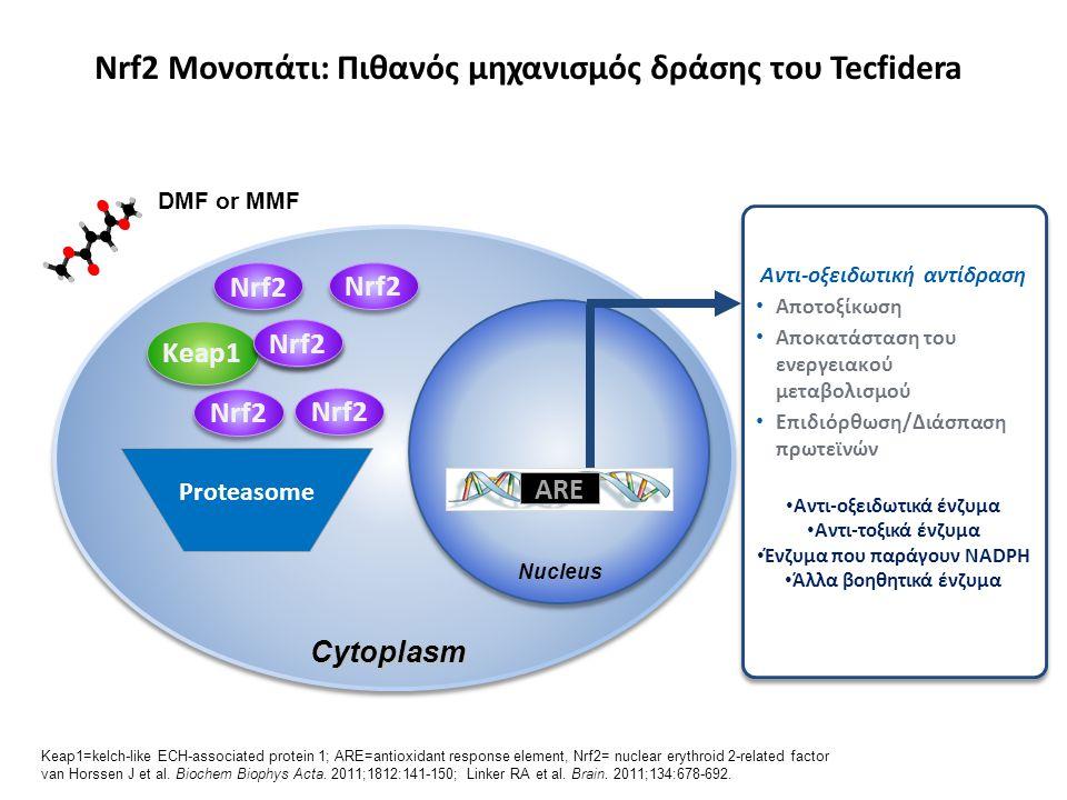 Nrf2 Μονοπάτι: Πιθανός μηχανισμός δράσης του Tecfidera