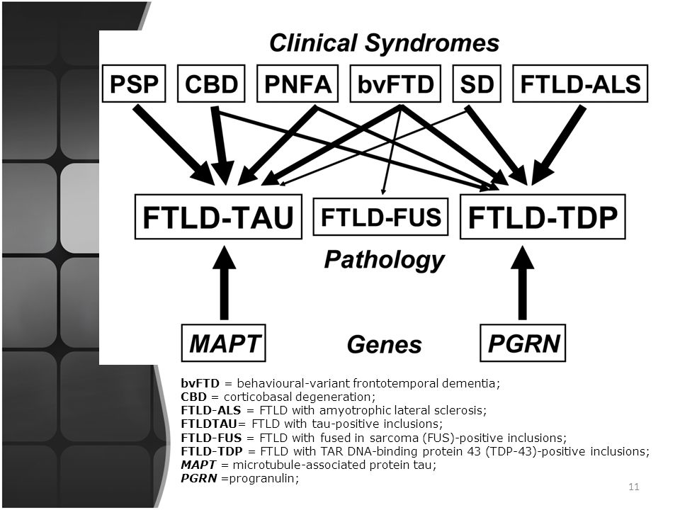 bvFTD = behavioural-variant frontotemporal dementia;