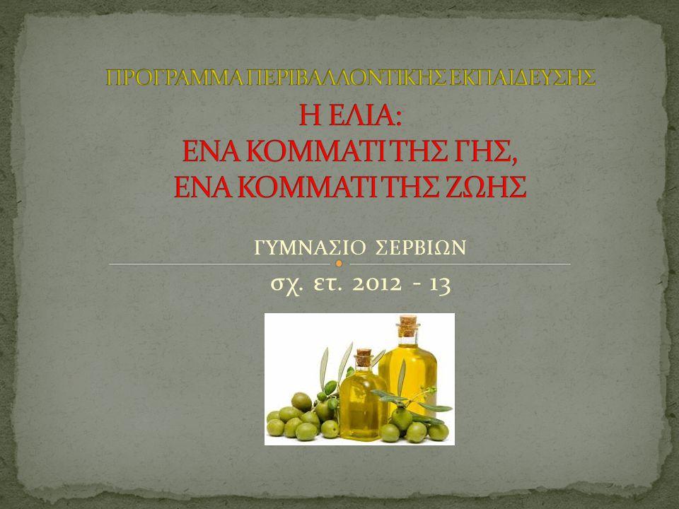 ΓΥΜΝΑΣΙΟ ΣΕΡΒΙΩΝ σχ. ετ. 2012 - 13