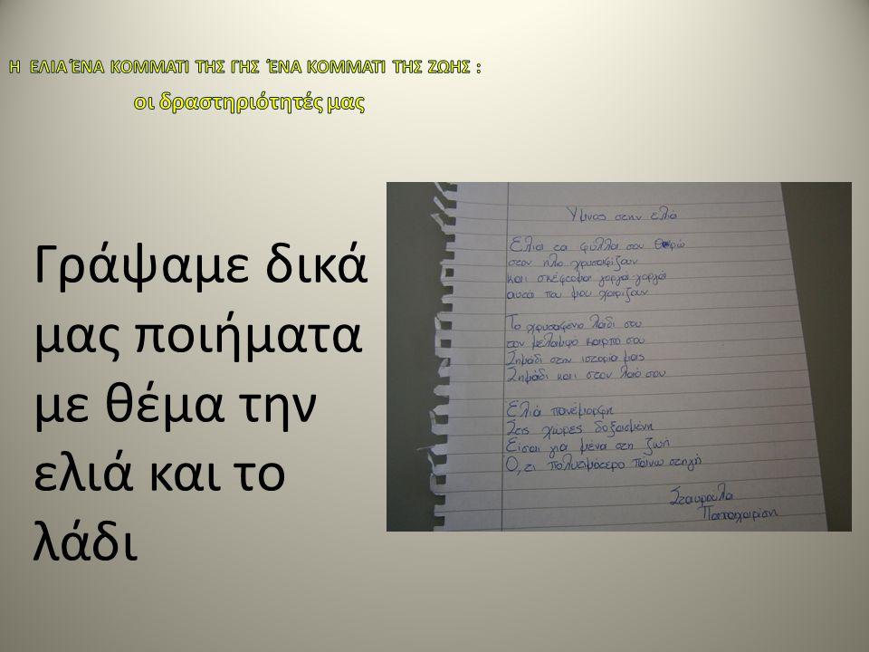 Γράψαμε δικά μας ποιήματα με θέμα την ελιά και το λάδι