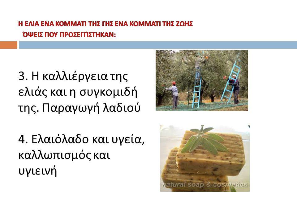 3. Η καλλιέργεια της ελιάς και η συγκομιδή της. Παραγωγή λαδιού
