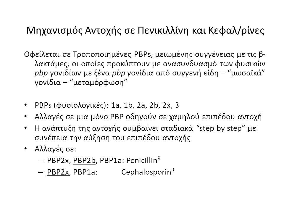 Μηχανισμός Αντοχής σε Πενικιλλίνη και Κεφαλ/ρίνες