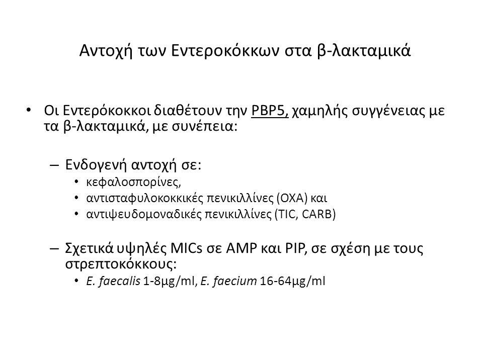 Αντοχή των Εντεροκόκκων στα β-λακταμικά