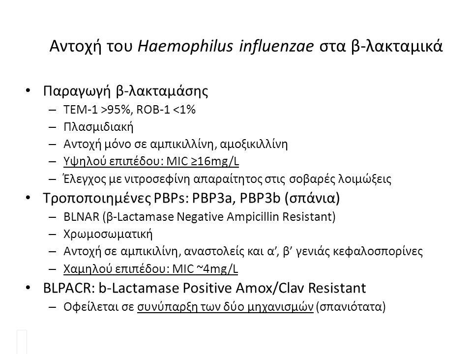 Αντοχή του Haemophilus influenzae στα β-λακταμικά