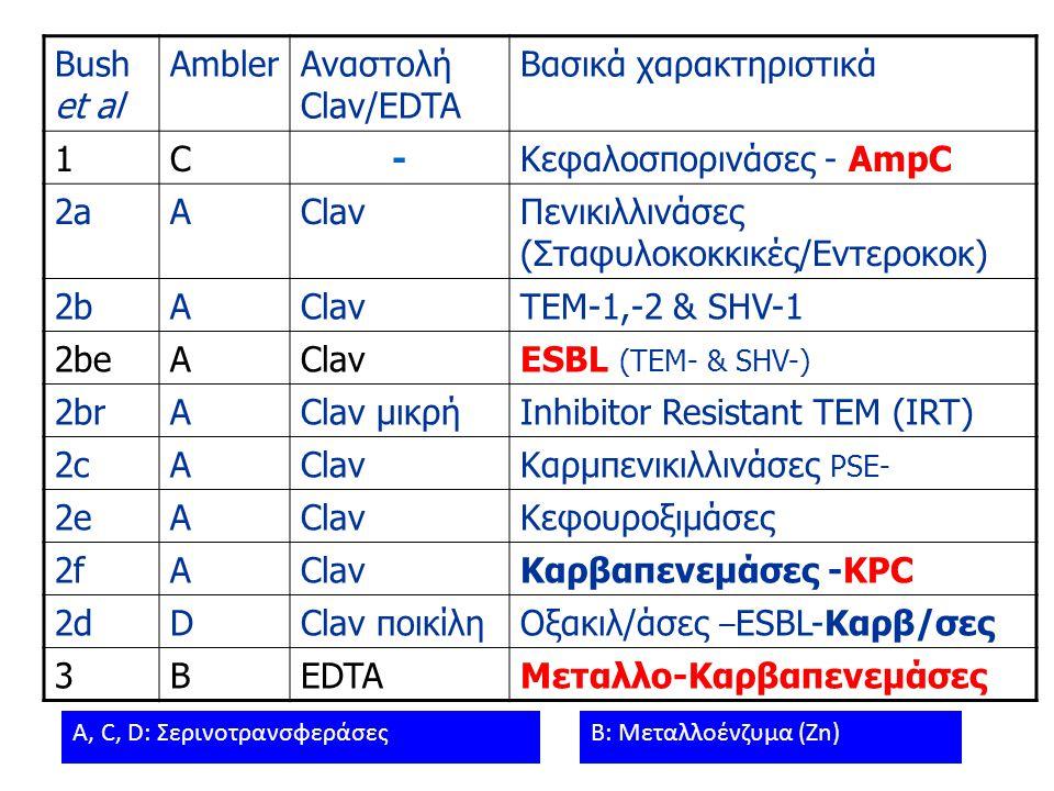 Βασικά χαρακτηριστικά 1 C - Κεφαλοσπορινάσες - AmpC 2a A Clav