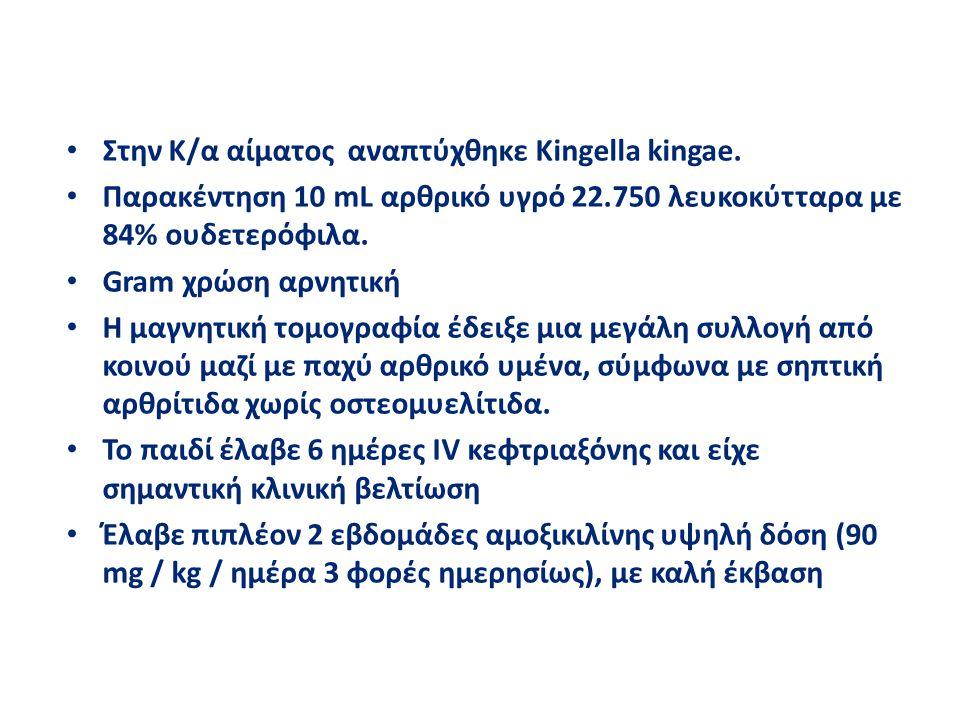 Στην Κ/α αίματος αναπτύχθηκε Kingella kingae.
