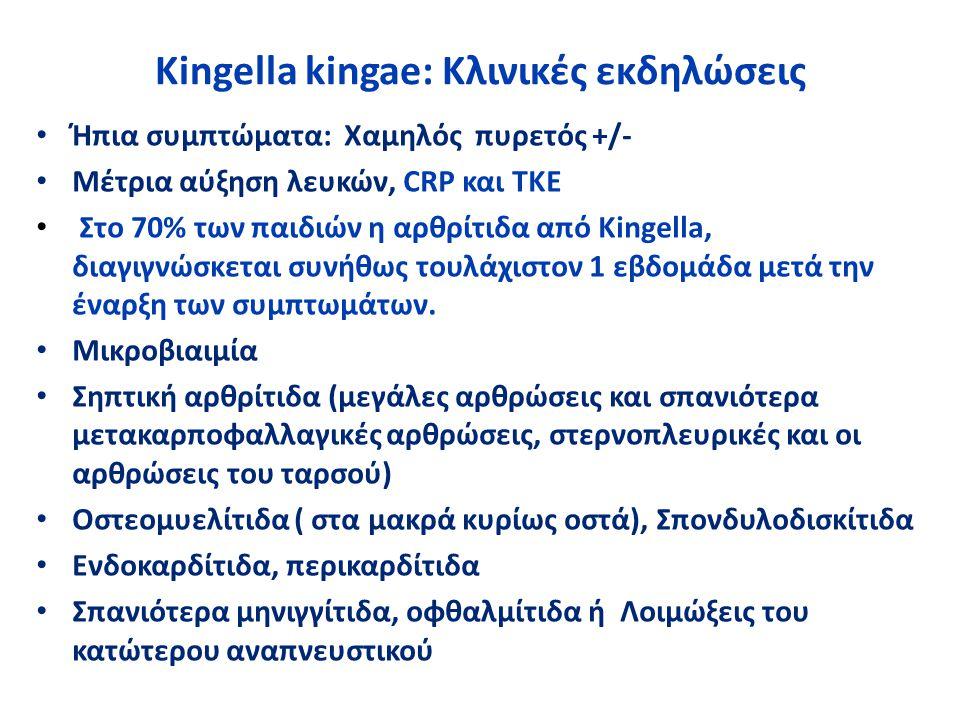 Kingella kingae: Κλινικές εκδηλώσεις