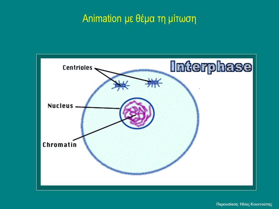 Animation με θέμα τη μίτωση