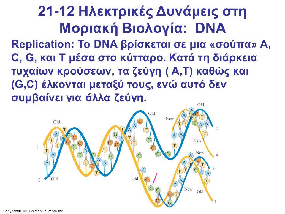 21-12 Ηλεκτρικές Δυνάμεις στη Μοριακή Βιολογία: DNA