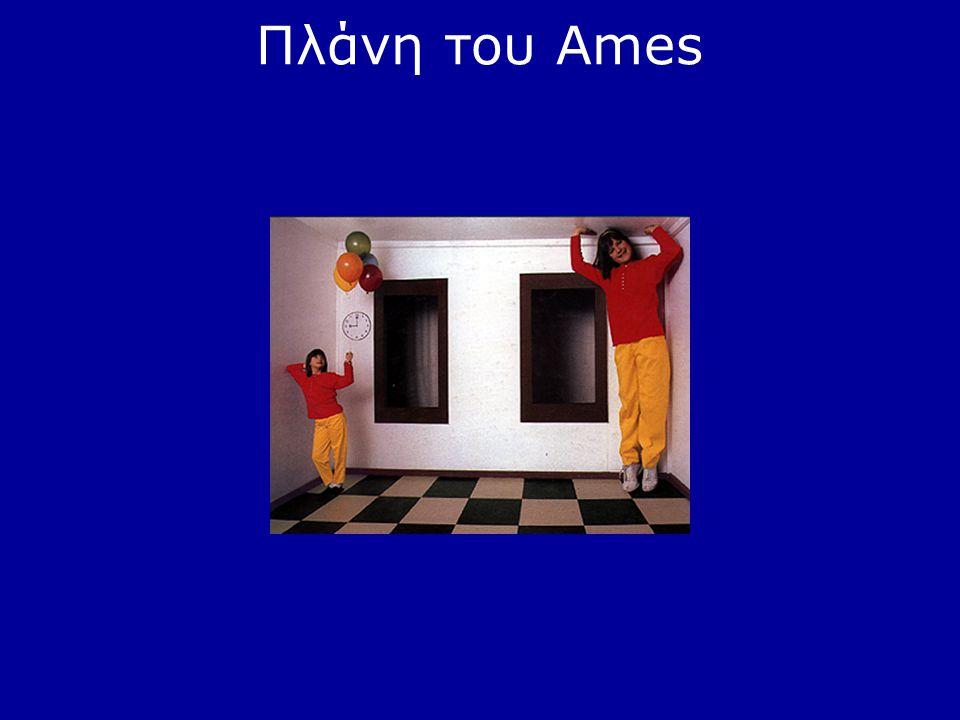 Πλάνη του Ames