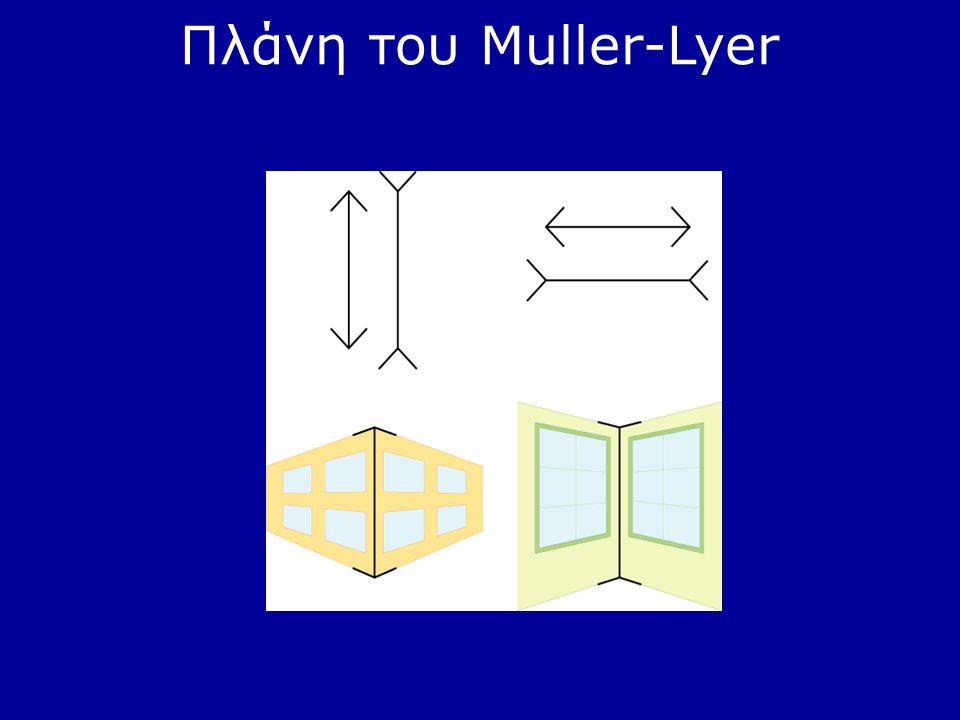 Πλάνη του Muller-Lyer