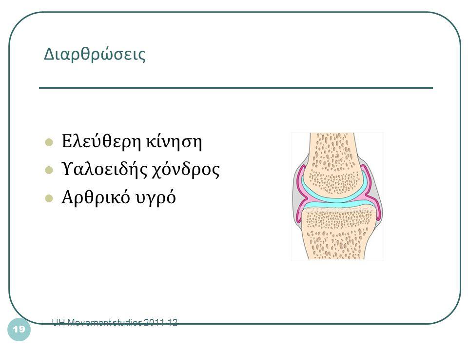 Ελεύθερη κίνηση Υαλοειδής χόνδρος Αρθρικό υγρό Διαρθρώσεις