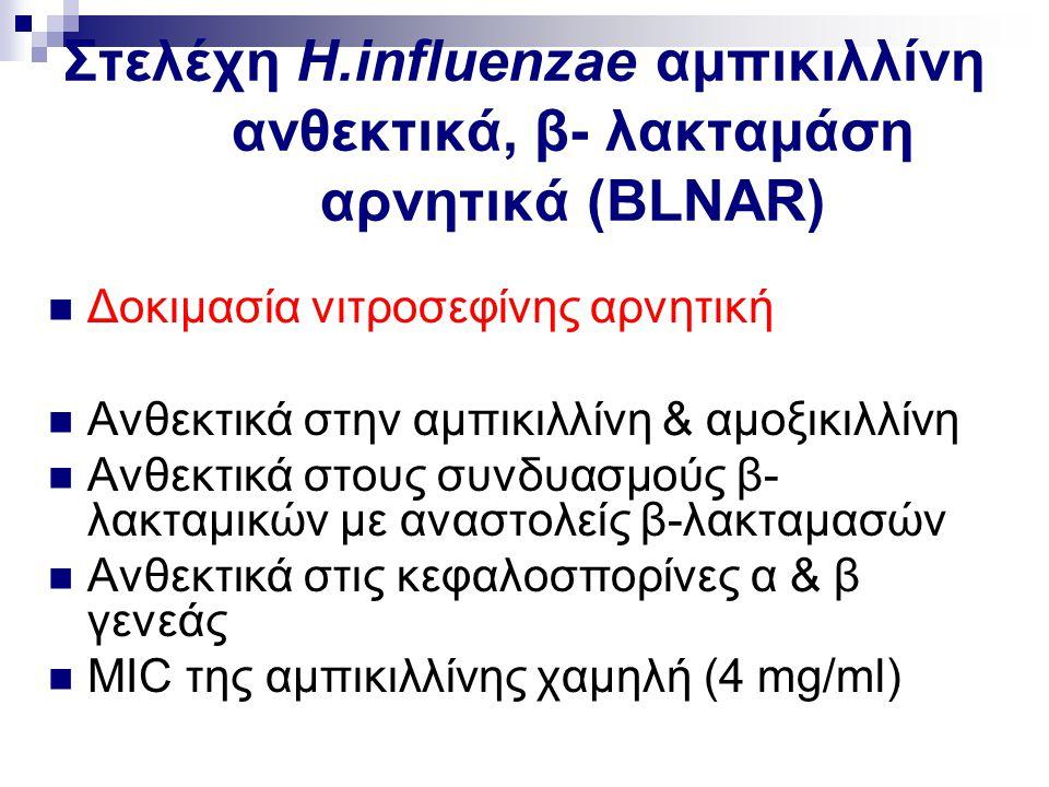 Στελέχη H.influenzae αμπικιλλίνη ανθεκτικά, β- λακταμάση αρνητικά (BLNAR)