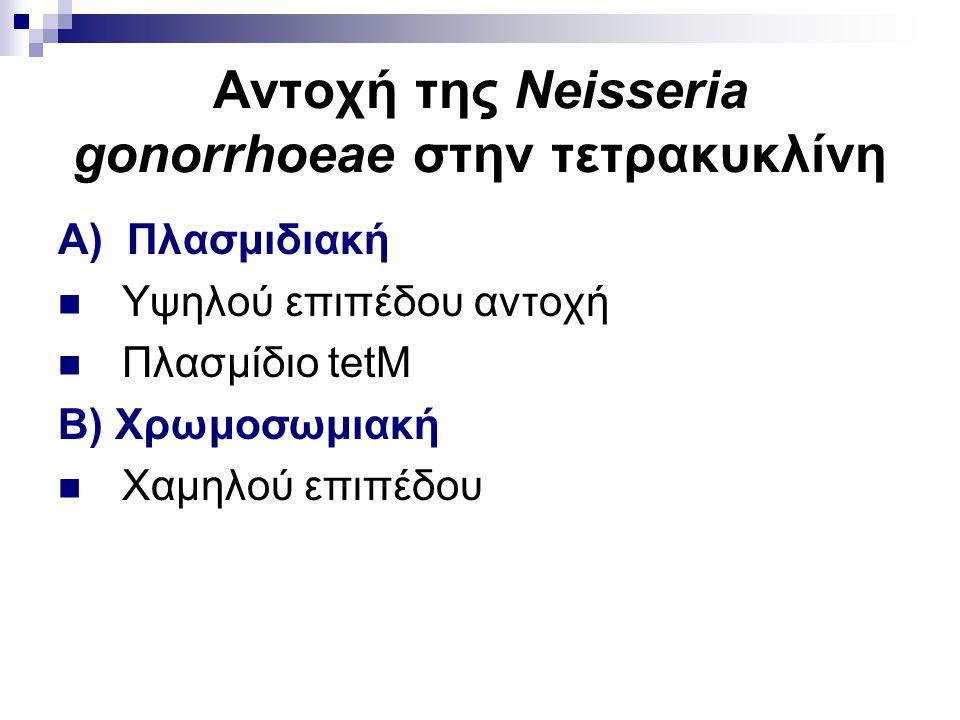 Αντοχή της Neisseria gonorrhoeae στην τετρακυκλίνη