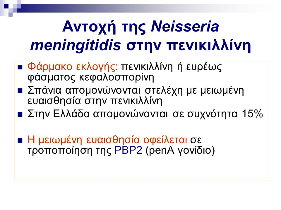 Αντοχή της Neisseria meningitidis στην πενικιλλίνη