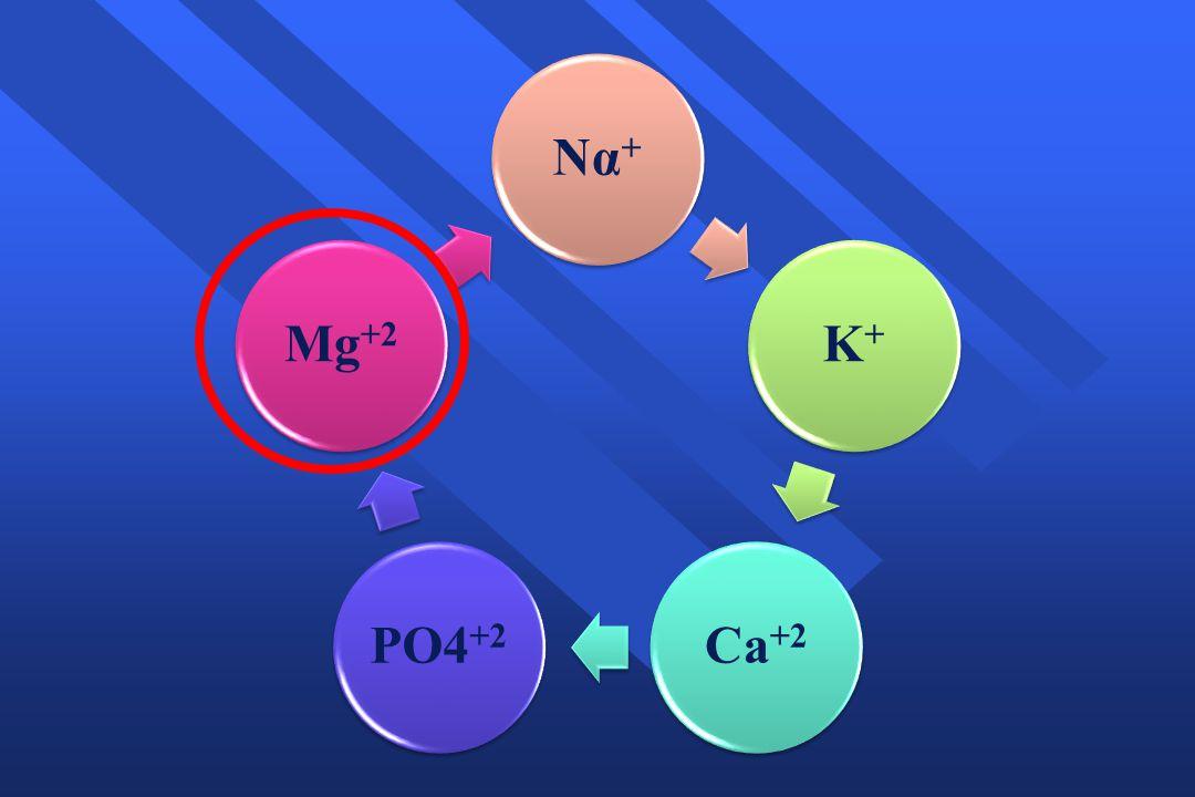 Να+ Κ+ Ca+2 PO4+2 Mg+2