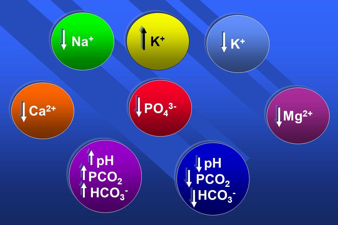 Νa+ Κ+ Κ+ PO43- Ca2+ Mg2+ pH PCO2 HCO3- pH PCO2 HCO3-