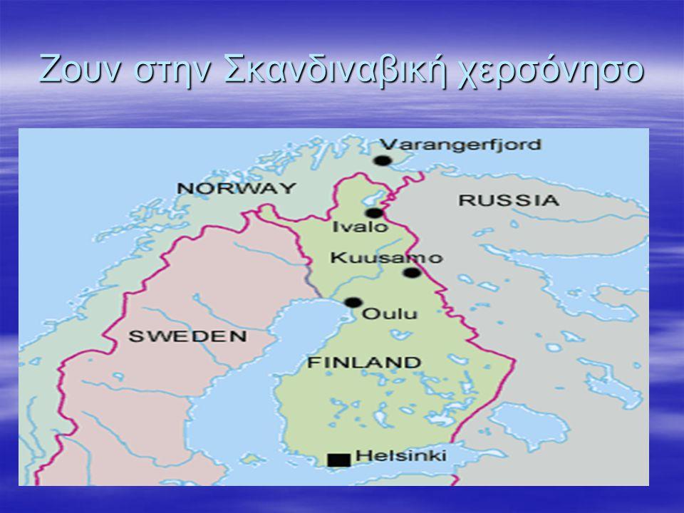 Ζουν στην Σκανδιναβική χερσόνησο