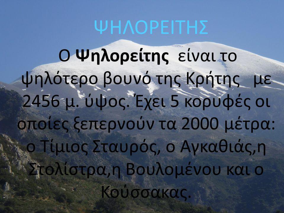 ΨΗΛΟΡΕΙΤΗΣ