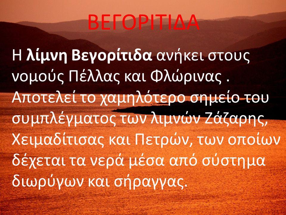 ΒΕΓΟΡΙΤΙΔΑ