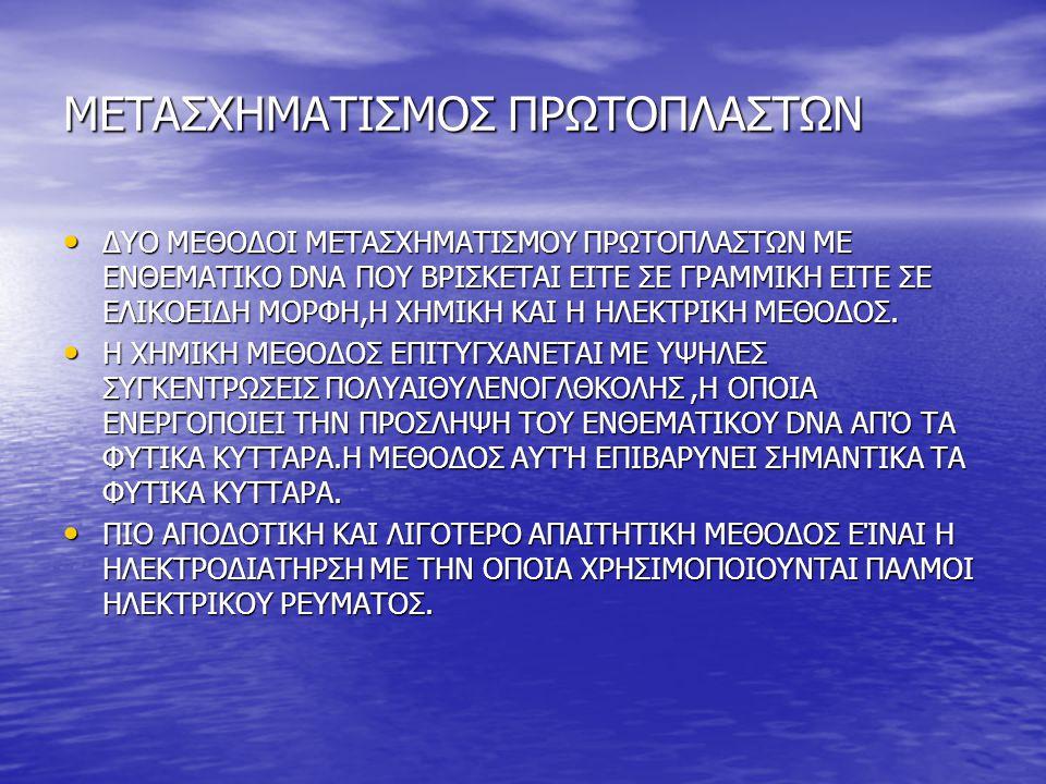 ΜΕΤΑΣΧΗΜΑΤΙΣΜΟΣ ΠΡΩΤΟΠΛΑΣΤΩΝ
