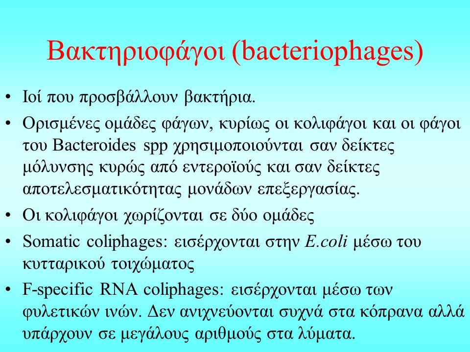 Βακτηριοφάγοι (bacteriophages)