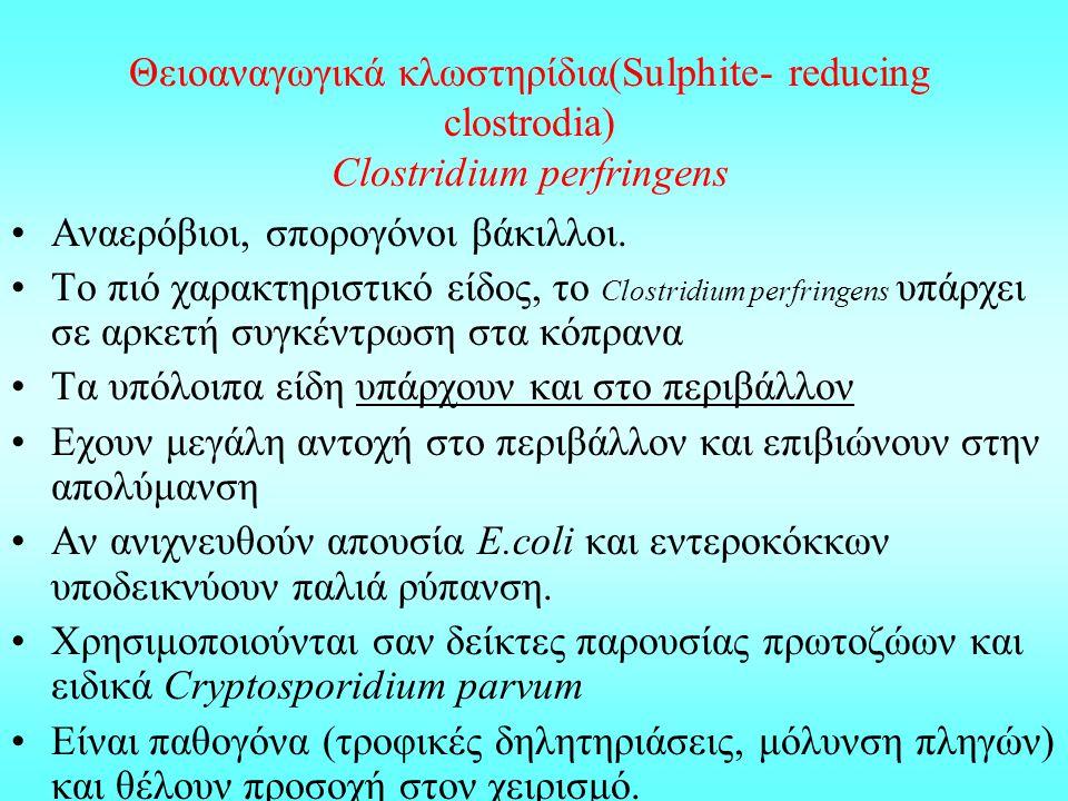 Θειοαναγωγικά κλωστηρίδια(Sulphite- reducing clostrodia) Clostridium perfringens
