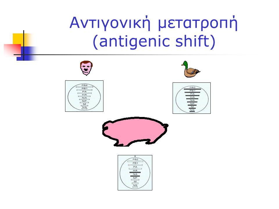 Αντιγονική μετατροπή (antigenic shift)