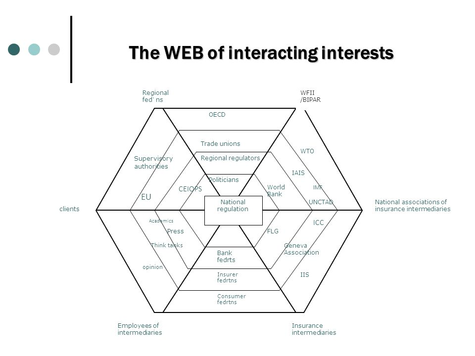The WEB of interacting interests