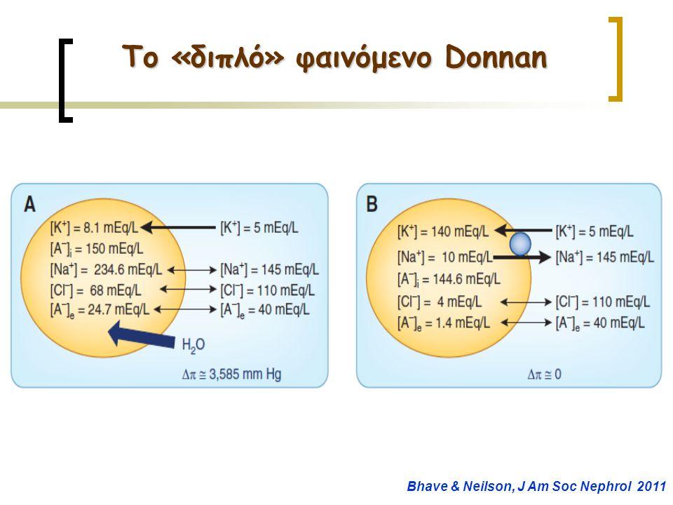 Το «διπλό» φαινόμενο Donnan