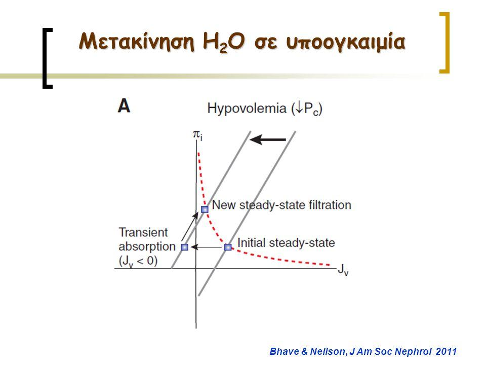 Μετακίνηση H2O σε υποογκαιμία