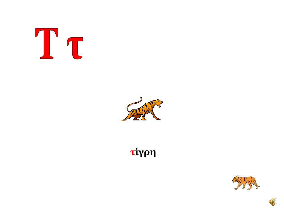 Τ τ τίγρη