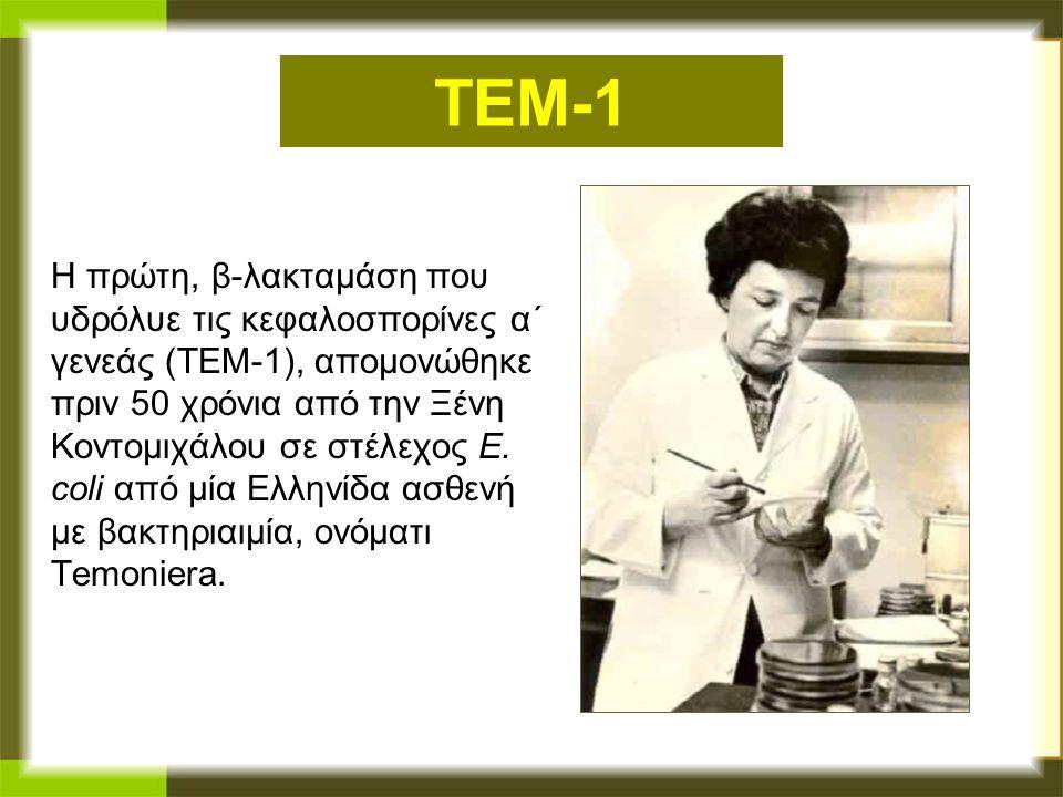 TEM-1