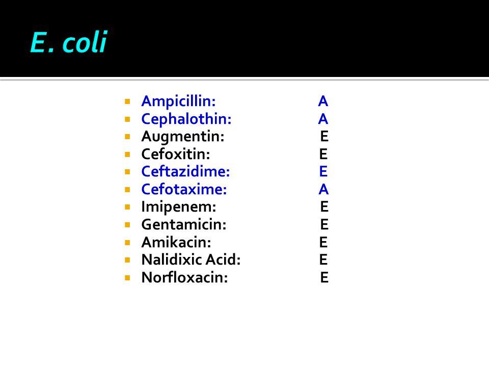 Ε. coli Αmpicillin: A Cephalothin: A Augmentin: E Cefoxitin: E