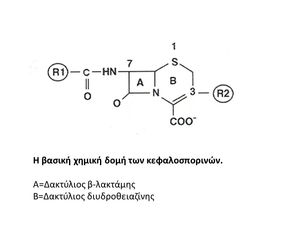 Η βασική χημική δομή των κεφαλοσπορινών.