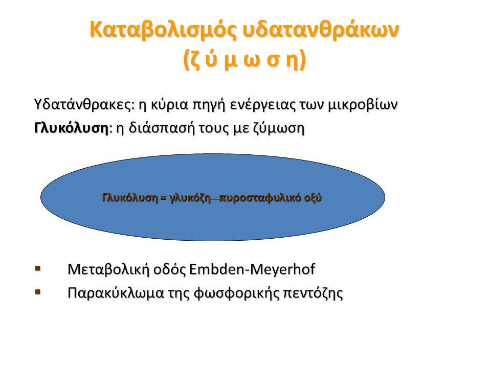 Καταβολισμός υδατανθράκων (ζ ύ μ ω σ η)