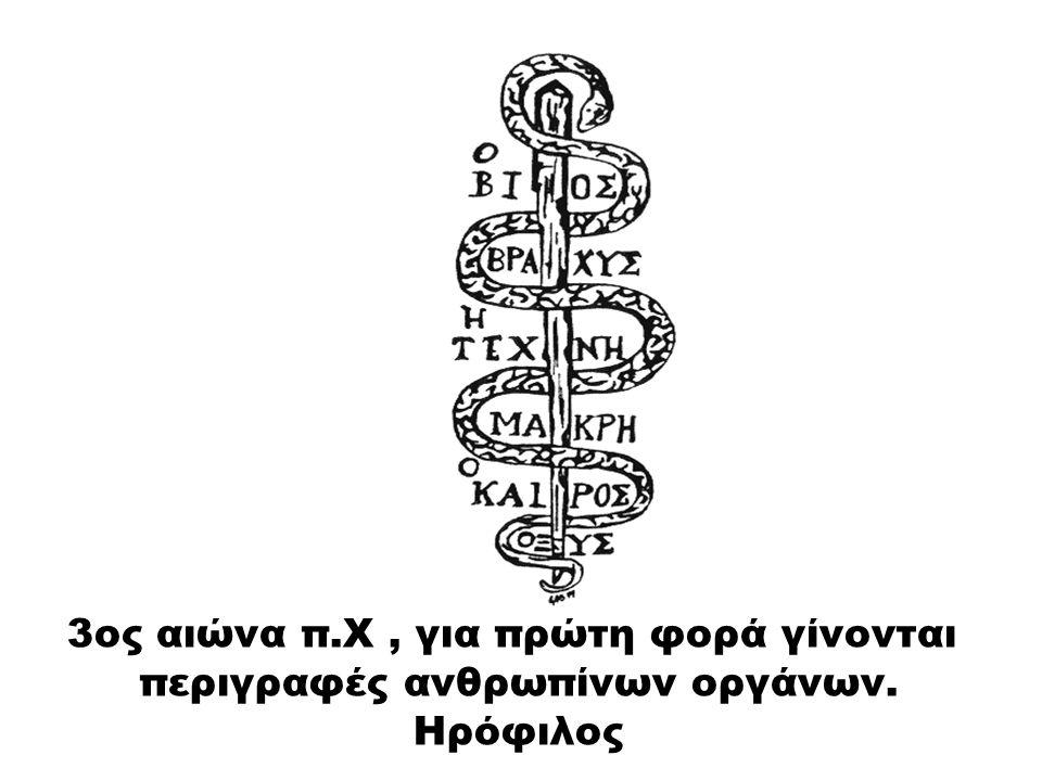 3ος αιώνα π.Χ , για πρώτη φορά γίνονται περιγραφές ανθρωπίνων οργάνων.