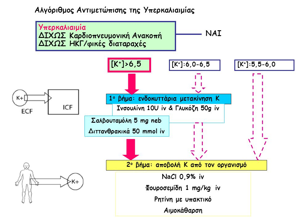 Ινσουλίνη 10U iv & Γλυκόζη 50g iv 2ο βήμα: αποβολή Κ από τον οργανισμό