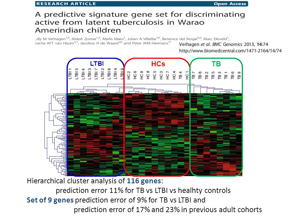 Hierarchical cluster analysis of 116 genes: