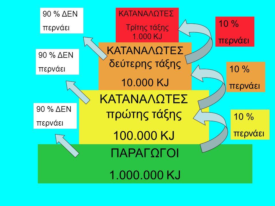 ΚΑΤΑΝΑΛΩΤΕΣ πρώτης τάξης 100.000 KJ