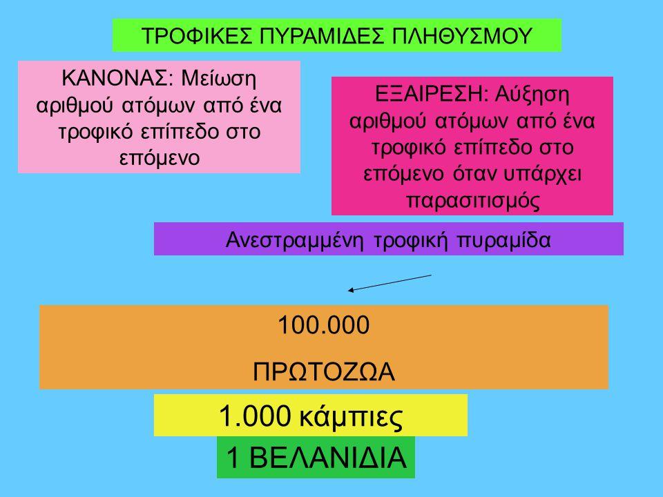 1.000 κάμπιες 1 ΒΕΛΑΝΙΔΙΑ 100.000 ΠΡΩΤΟΖΩΑ