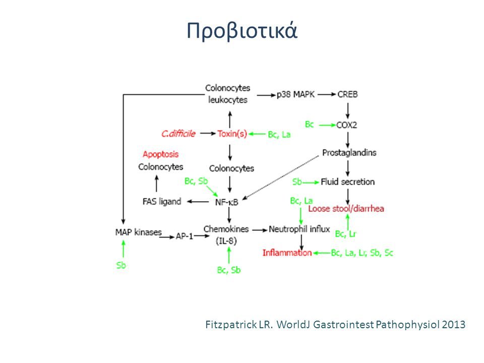 Προβιοτικά Fitzpatrick LR. WorldJ Gastrointest Pathophysiol 2013