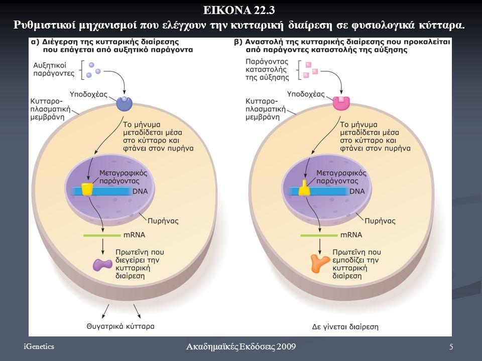 ΕΙΚΟΝΑ 22.3 Ρυθμιστικοί μηχανισμοί που ελέγχουν την κυτταρική διαίρεση σε φυσιολογικά κύτταρα. iGenetics.