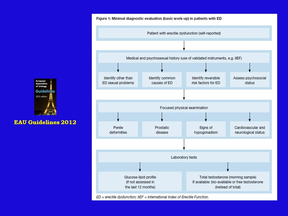 EAU Guidelines 2012