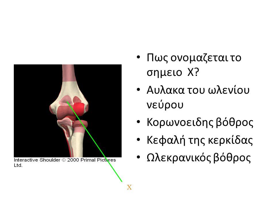 Πως ονομαζεται το σημειο Χ Αυλακα του ωλενίου νεύρου