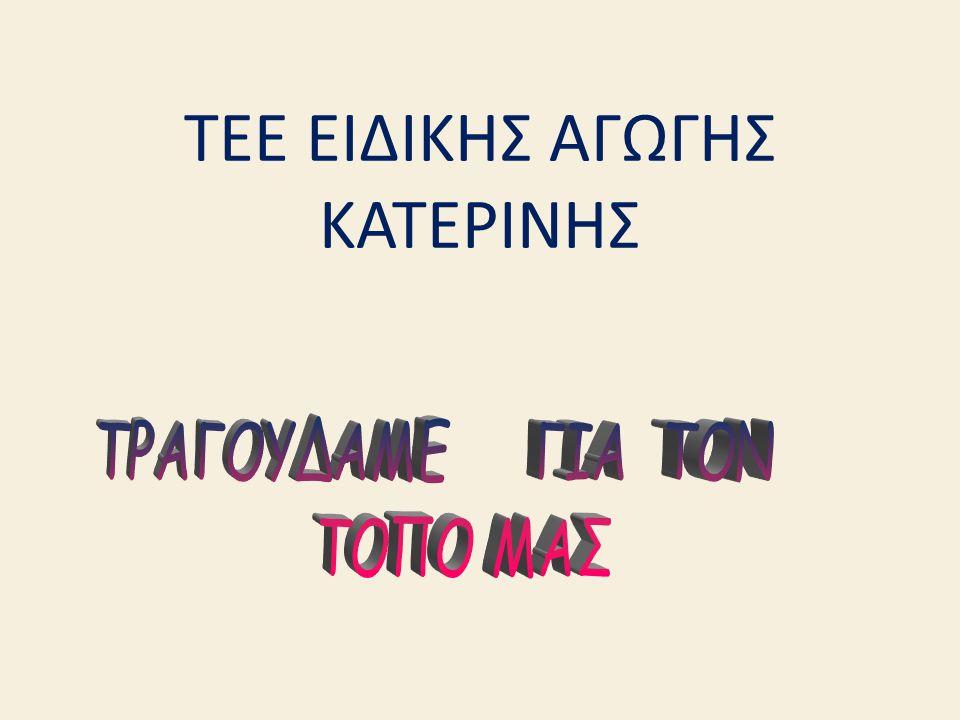 ΤΕΕ ΕΙΔΙΚΗΣ ΑΓΩΓΗΣ ΚΑΤΕΡΙΝΗΣ