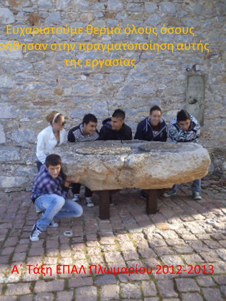 Α΄ Τάξη ΕΠΑΛ Πλωμαρίου 2012-2013