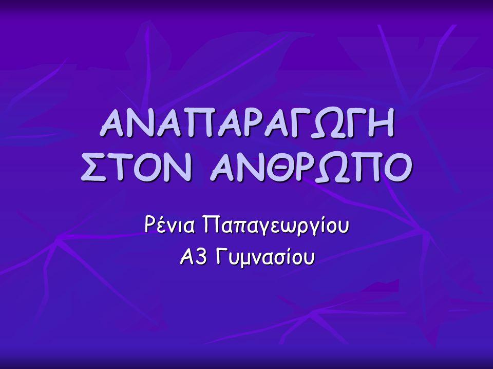 ΑΝΑΠΑΡΑΓΩΓΗ ΣΤΟΝ ΑΝΘΡΩΠΟ